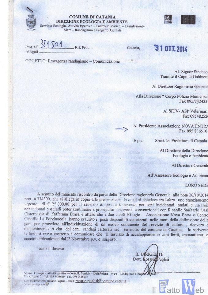 """Randagi: Ufficio Gabinetto ribadisce, nessuna sospensione servizio  """"Da dirigente atti incongruenti su sospensione servizio"""""""