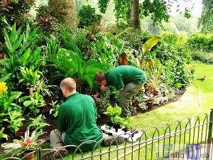 Carceri: manutenzione del verde in parco comunale da quattro giovani detenuti