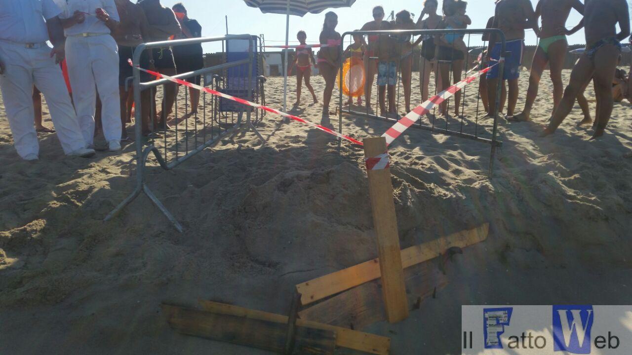 Playa di Catania: sorprendente  ritrovamento uova di tartarughe