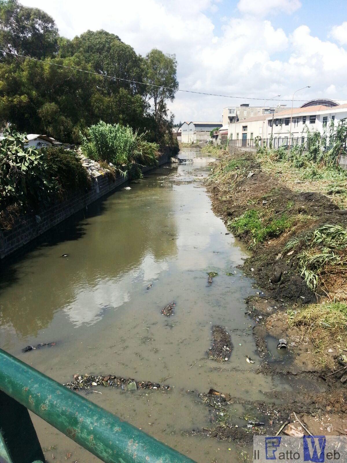 Maltempo: pulizia straordinaria torrenti cittadini