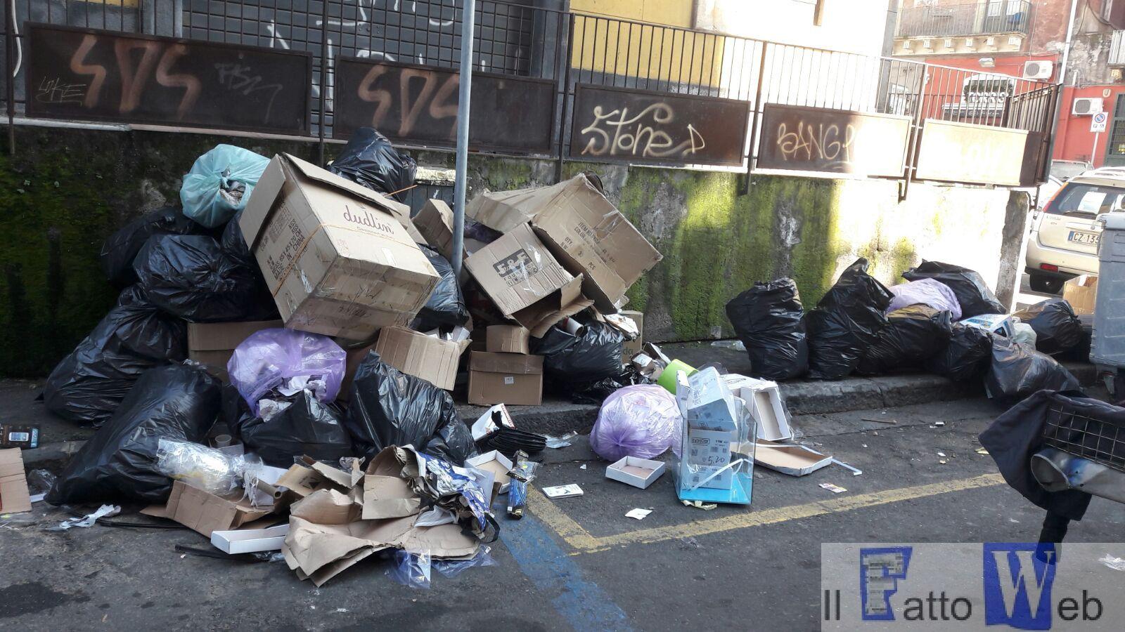 Tutela ambientale, due interventi dei Vigili Urbani