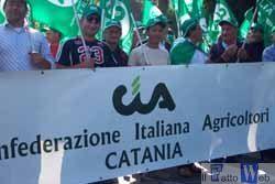 Cia: Alla Piana di Catania raccolti rovinati dopo la violenta grandinata di domenica scorsa