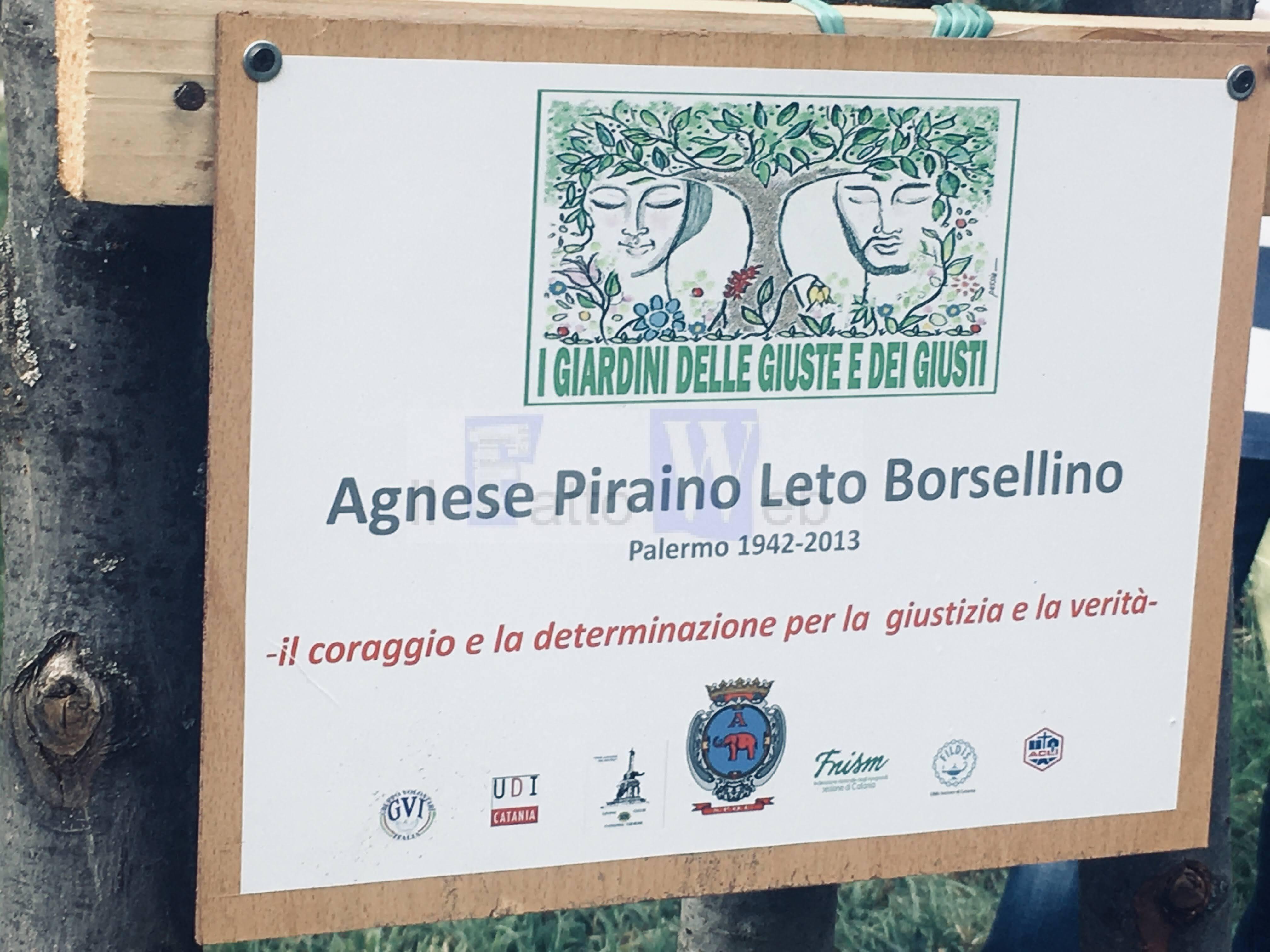 Strage di via D'Amelio, a Catania piantati tre alberi in memoria delle vittime