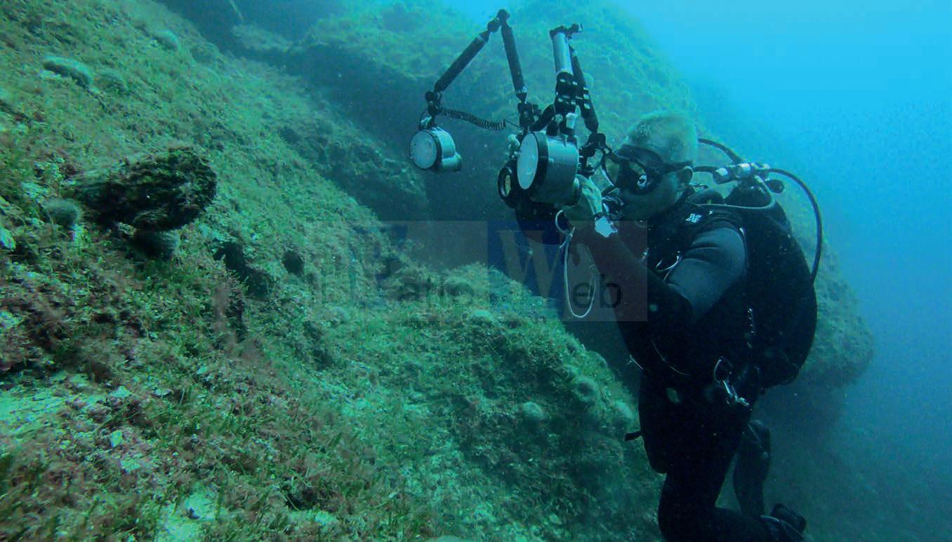 Il progetto MAP.PLEMM per tracciare il limite superiore delle praterie di Posidonia